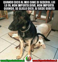 Il #cane seduto #vignetteitaliane.it #vignette #italiane #immagini #divertenti #lol #funnypics #umorismo #humour #humor #ridere #risate #cani