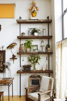pipe & reclaimed wood shelves