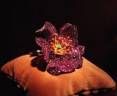 JAR Bracelet by Elysiumfield