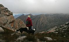 Scouting new route. Photo Hike & Trail Run Cape Town Scouting, Trail Running, Cape Town, Hiking, Challenge, Sport, Mountains, Explore, Nature