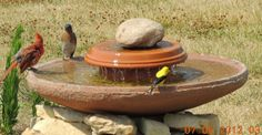 Awesome homemade birdbath idea.