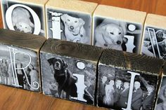Man's BEST Friend- Personalized Photo Letter Blocks for PET lovers- per block price on Etsy, $7.50