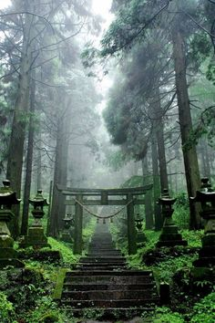 Kamishikimi Kumanoimasu Shrine (上色見熊野座神社) in Takamori, Aso District, Kumamoto Prefecture. Belle Image Nature, Beautiful World, Beautiful Places, Landscape Photography, Nature Photography, Scenic Photography, Japanese Shrine, Japanese Temple, Mont Fuji