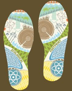ideas for eco footprint activity for school