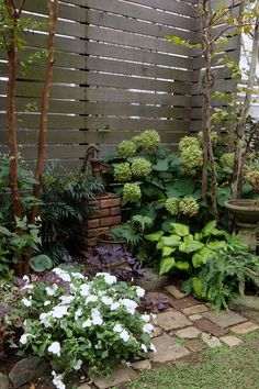A small garden at home can make your home look more attractive, with a variety of fresh plants that decorate the house and beautiful flowers you have to put it at home Small House Garden, Balcony Garden, Dream Garden, Back Garden Landscaping, Garden Paths, Garden Guide, Garden Pond, Flower Landscape, Green Landscape