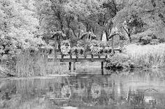 Fotografía black and white por helene stelliou liboiron en 500px