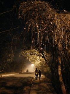 JNU, after midnight
