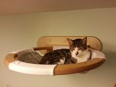 Pamper your pet cat with a cuddly-soft cat bed - Top Crafts Pet Furniture, Furniture Quotes, Furniture Showroom, Urban Furniture, Classic Furniture, Plywood Furniture, Farmhouse Cat Furniture, Industrial Furniture, Simple Furniture
