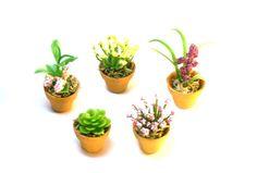 Set of Five Miniature Plants Fairy Garden Dollhouse Flowers in Clay Pots