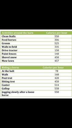 Horse workout calories