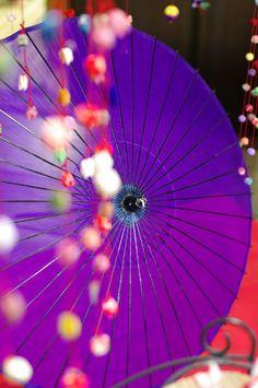 Japanese umbrella, Wagasa. 和傘 | love♡purple