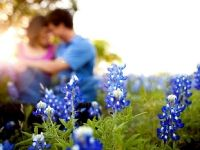 I want to take my engagement photos in a field of bluebonnets. So unique and representative of Texas