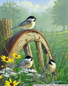 "Hautman Brothers - ""Meadow's Edge, Chickadees"""