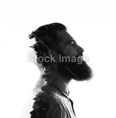Bearded man and pinewood