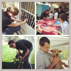 @Chelsie Cox Ducks and Honda Center staff volunteered at OC Animal Care by making pet beds and helping to socialize the dogs at the shelter. If you are interested in adopting a pet, there are plenty that need good homes! Please visit www.ocpetinfo.com to view a full list of their adoptable pets and also find information on how you can help!