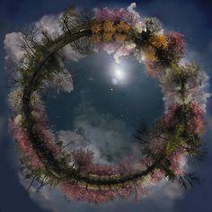 Catherine Nelson csodálatos munkái különleges természetfotók több száz apró részletének összeolvasztásával jöttek létre. Az egyedülálló művek Földünk biológiai sokféleségét reprezentálják, s mind-mind lenyűgöző világokat tárnak elénk.