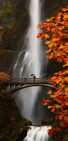 Multnomah Falls in the Columbia River Gorge near Portland, Oregon • photo: Steven Michael on 500px