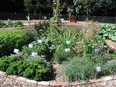 Diy Trend Kruidentuin : Best moestuin kruidentuin images in garden
