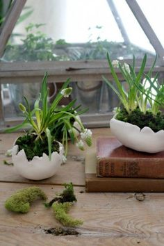 Diy eggshell planters, air dry clay