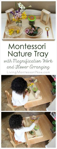 This Montessori nature tray is simple to prepare and update after a nature walk. It focuses on both magnification and flower arranging activities for toddlers and preschoolers.