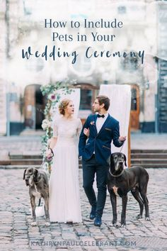 If you are thinking of having your #dog walk you down the aisle, give you away or be the ring bearer, there are a few considerations to keep in mind before the big #wedding day > Weddings, #marriage, celebrant, officiant, order of service, ceremony, bride, groom, same sex, love, relationships, couples, sexuality, gender & body diversity, sydney, northern beaches > read more at kathrynpaulcelebrant.com
