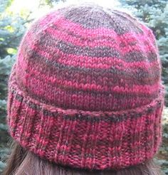recipe for a simple top-down hat with a 2x2 rib on the bottom, flat top.