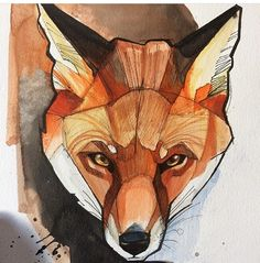 Fox # fox # watercolor
