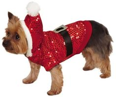 ZandZ Santa Claus Sequin Dog Hoodie Medium - http://www.thepuppy.org/zandz-santa-claus-sequin-dog-hoodie-medium/