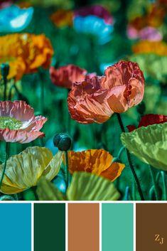 ZJ Colour Palette 490 #colourpalette #colourinspiration