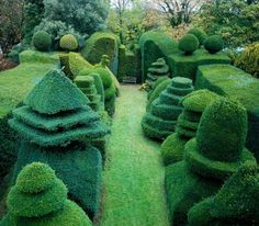 Whimsical and magical topiaries