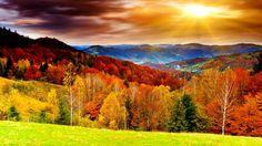 Есть в осени первоначальной Короткая, но дивная пора — Весь день стоит как бы хрустальный, И лучезарны вечера... Пустеет воздух, птиц не слышно боле, Но далеко еще до первых зимних бурь И льется чистая и теплая лазурь На отдыхающее поле... (Ф. Тютчев)