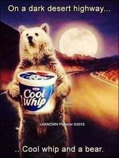 On a dark desert highway.Cool Whip and a bear. Funny Car Memes, Car Humor, Funny Cars, Funny Stuff, Hilarious, Music Humor, Music Memes, Funny Music