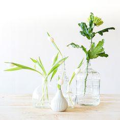 Styling tips: Vazen en bloemen   Flowers   Stek Magazine woonapp Happy Flowers, Wild Flowers, Get Happy, Green Nature, Flower Power, Flower Arrangements, Glass Vase, Cactus, Spring