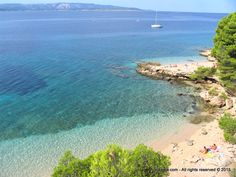 You can savor the specialties of the island of Brac, as well as the Dalmatian cuisine in numerous restaurants and taverns. Croatian Islands, Famous Buildings, Dalmatian, Tourism, Vacation, World, Beach, Water, Restaurants