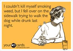 I couldn't kill myself smoking weed, but I fell over on the sidewalk trying to walk the dog while drunk last night. #Bong#Medical#Weed#Kush#THC#Pipe#Pot#Pipe#Waterpipe#Teagardins#SmokeShop 8531 Santa Monica Blvd West Hollywood, CA 90069 - Call or stop by anytime. UPDATE: Now ANYONE can call our Drug and Drama Helpline Free at 310-855-9168. Teagardins.com