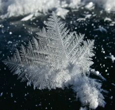 December was the month of ice crystals in Summit County. Usually these delicate creations are overshadowed by fluffy snow pillows, but this winter, they took a starring role.