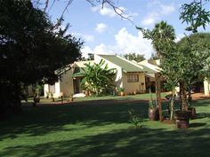 Bosveld Inn is situated in Thabazimbi, 15 km from Marekele National Park and another 15 km from the golf course. The inn has 2 Rooms - Explore, Plants, Travel, Viajes, Destinations, Plant, Traveling, Trips, Planets