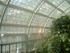 Schmetterlinghaus, Hofburg, Vienna, Austria Butterfly House, Art Nouveau Architecture, Vienna Austria, Tropical, Adventure, Places, Nature, Vienna, House