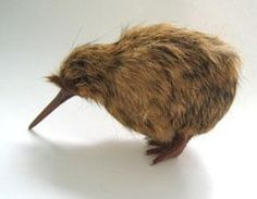 Little Spotted Kiwi doll