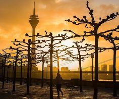 One of the beauties of Dusseldorf is that it is amazing all year round! If visiting in Autumn we'd recommend taking a stroll along the Rhine embankment, it's a great way to see the everchanging skyline of this city of culture!  Photo: @asavliuk
