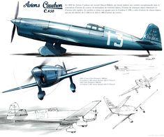 avions caudron c450