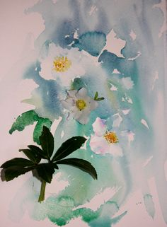 Watercolours With Life: Christmas Roses in Watercolour 2015