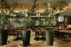 Discount Fall Home Decorations Info: 2295011964 Cafe Interior, Home Interior Design, Interior Decorating, Cafe Design, House Design, Japanese Restaurant Design, Decoration Restaurant, Green Cafe, Outdoor Cafe