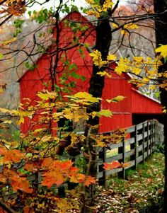 Rustic red barn stands out even with beautiful Fall colors of the leaves. Would you like to live here or just visit? Country Barns, Country Life, Country Living, Country Fall, Country Roads, Beautiful Places, Beautiful Pictures, Simply Beautiful, Red Barns