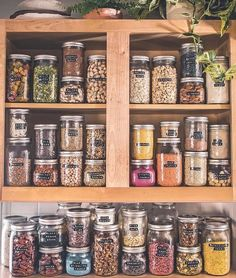 It is real! Glass jar storage is the best! It is real! Glass jar storage is the best! Glass jar labeling I love this! It is real! Glass jar storage is the best! Kitchen Organization Pantry, Kitchen Pantry, Home Organization, Kitchen Ideas, Organized Pantry, Kitchen Cabinets, Freezer Organization, Pantry Cupboard, Pantry Ideas