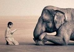 we share so much more with one another, with the earth, than we even know ...