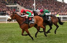 Dodging Bullets ridden by Sam Twiston-Davies passes in front of the grandstand ahead of Somersby ridden by Brian Hughes to win the Betway Queen Mother Champion Chase during Ladies Day at the Cheltenham Festival at Cheltenham Racecourse on March 11, 2015 in Cheltenham, England.