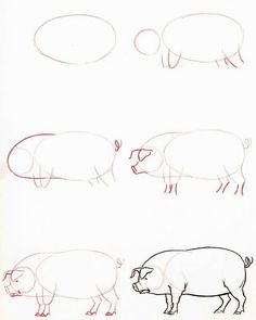 Exciting Learn To Draw Animals Ideas. Exquisite Learn To Draw Animals Ideas. Animal Sketches, Animal Drawings, Drawing Sketches, Pencil Drawings, Sketching, Pig Sketch, Drawing Lessons, Drawing Techniques, Step By Step Drawing