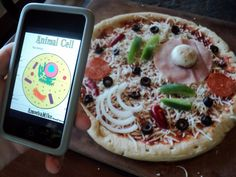 Printable Plant and Animal Cell | Journey to Excellence: Cells ~ It's What's for Dinner