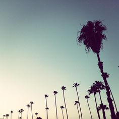 From Los Angeles | mydistriKt